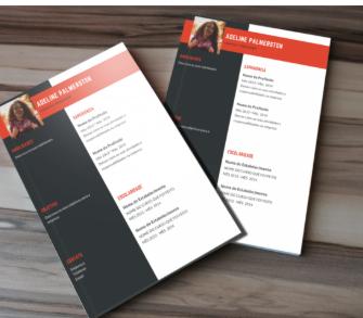 image 2 335x293 - Como conseguir um emprego – Método prático para se destacar da concorrência