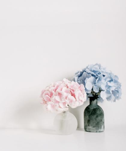 minimalismo 2 420x502 - O que é minimalismo? Tudo que você precisa saber sobre este estilo de vida