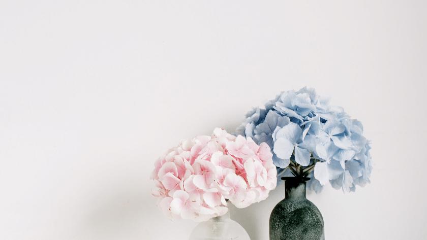 minimalismo 2 840x473 - O que é minimalismo? Tudo que você precisa saber sobre este estilo de vida
