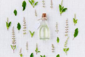 oleo de melaleuca 2 272x182 - Óleo de melaleuca - benefícios e formas de uso para estética e saúde