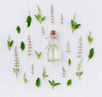 oleo de melaleuca 2 335x320 - Óleo de melaleuca - benefícios e formas de uso para estética e saúde