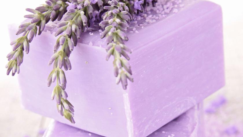 sabonete de lavanda 1 840x473 - Receita de sabonete artesanal de lavanda passo a passo