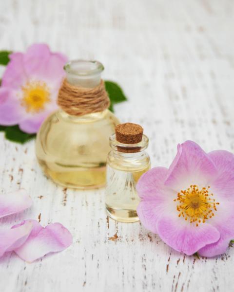 oleo de rosa mosqueta 2 480x600 - Óleo de rosa mosqueta – principais benefícios e como usar corretamente
