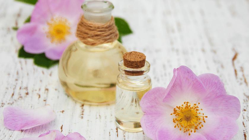 oleo de rosa mosqueta 2 840x473 - Óleo de rosa mosqueta – principais benefícios e como usar corretamente