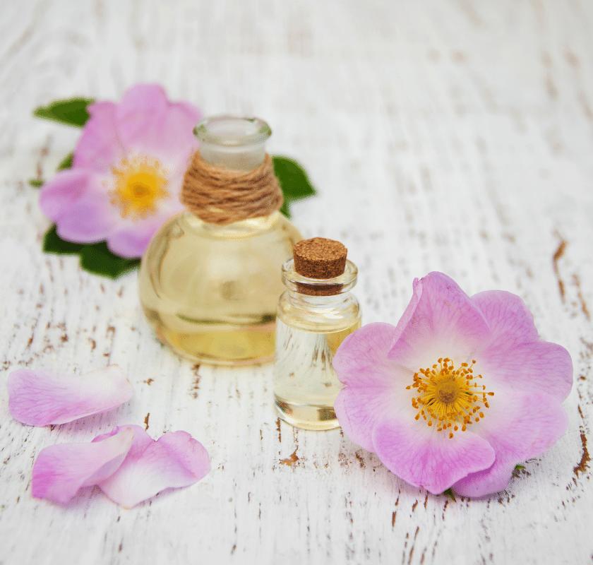 Óleo de rosa mosqueta – principais benefícios e como usar corretamente