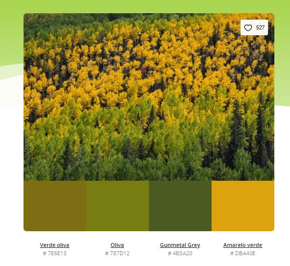 paleta de cores verde musgo - Modelos de paleta de cores verde - 10 combinações inspiradoras