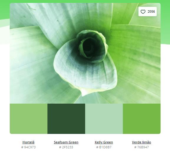 paleta de cores verde pastel - Modelos de paleta de cores verde - 10 combinações inspiradoras